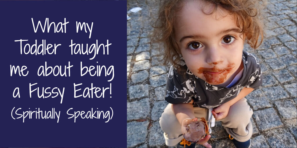 What My Toddler Taught Me about Being a Fussy Eater! (Spiritually Speaking) - jtdyer.com